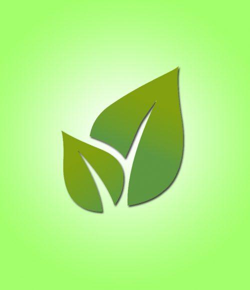 Environmental protection and health